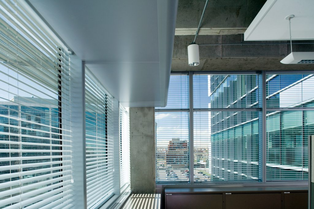 Natural light deeply penetrates the workplace, impacting productivity