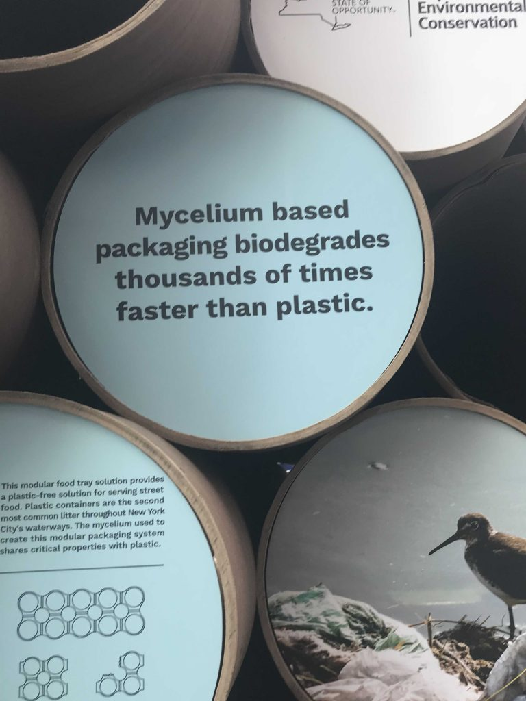Pratt student's Mycelium based packaging biodegrades thousands of times faster then plastic.